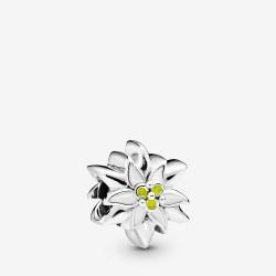 Pandora 798243ENMX Charm Edelsweiss Flower Sterling-Silber